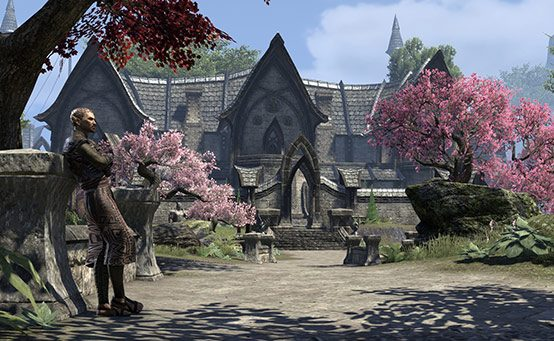 The Elder Scrolls Online on PS4: Your Questions Answered