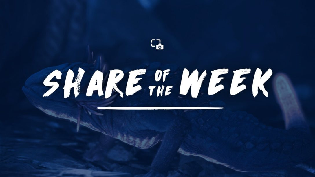 Share of the Week: Animals