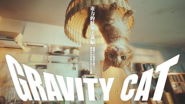 """世界最高峰!「カンヌライオンズ 2017」で『GRAVITY DAZE 2』の「重力猫」PVが""""Gold Lion""""他7つの賞を受賞!"""